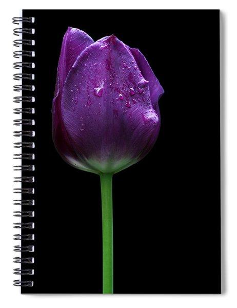 Purple Tulip Spiral Notebook