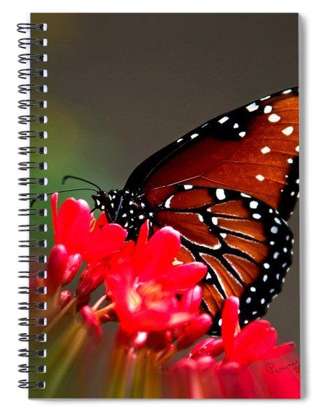 Queen Butterfly II Spiral Notebook