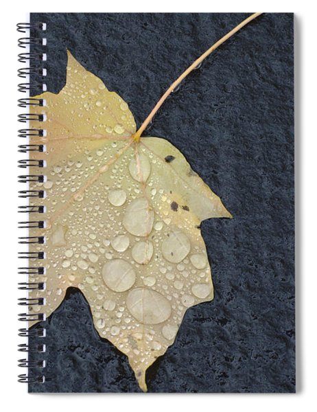 Rain Drops On A Yellow Maple Leaf Spiral Notebook