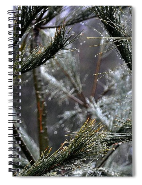 Rain On Pine Needles Spiral Notebook