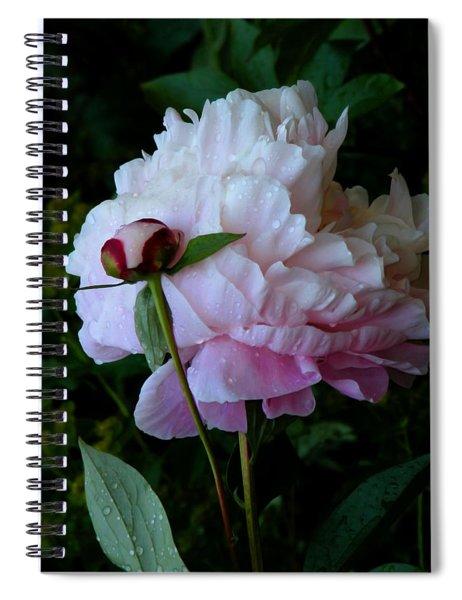 Rain-soaked Peonies Spiral Notebook
