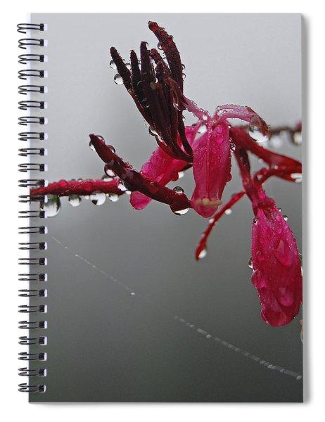 Rain Weaver Spiral Notebook