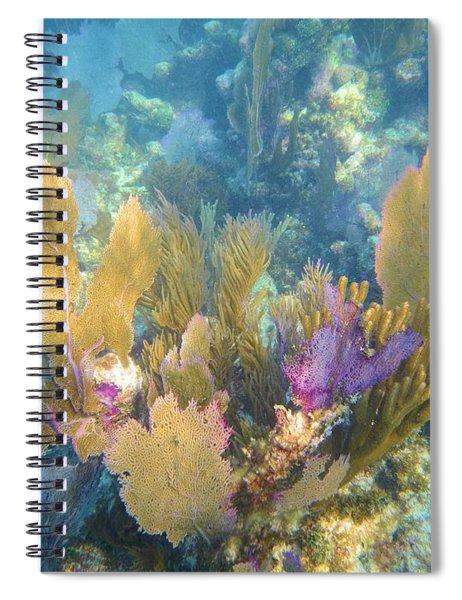 Rainbow Forest Spiral Notebook