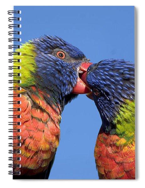 Rainbow Lorikeets Spiral Notebook