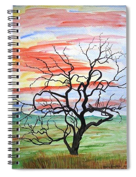 Rainbow Mesquite Spiral Notebook