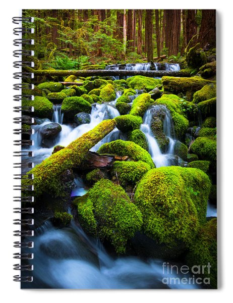 Rainforest Magic Spiral Notebook