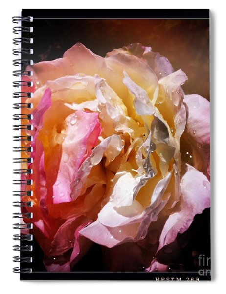 Rainy Rose Spiral Notebook