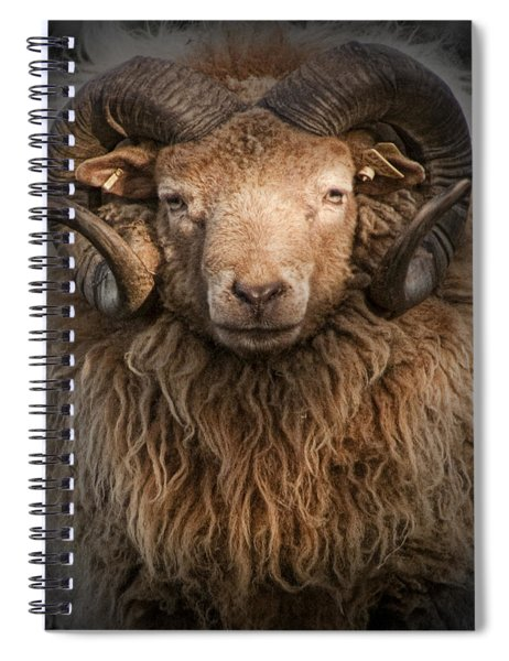 Ram Portrait Spiral Notebook
