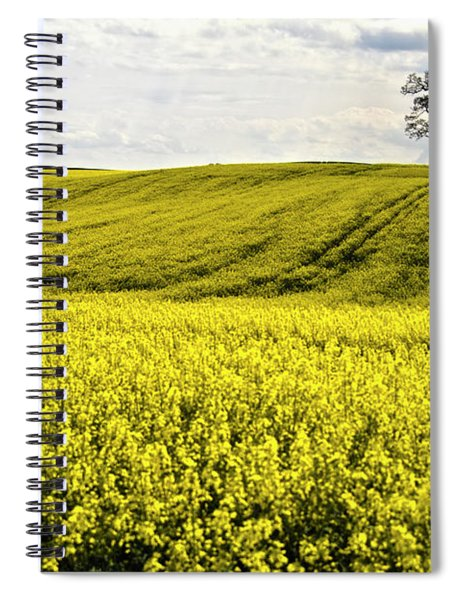 Rape Landscape With Lonely Tree Spiral Notebook