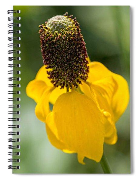 Ratibida Columnifera Spiral Notebook