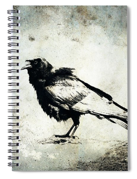 Raven On Blue Spiral Notebook