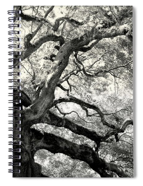 Reaching For Heaven Spiral Notebook