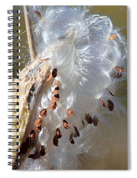 Ready To Fly Spiral Notebook