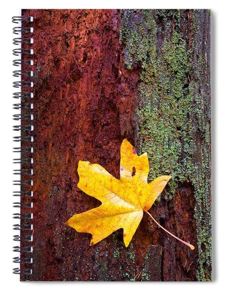 Reclamation Spiral Notebook