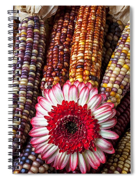 Red And White Mum With Indian Corn Spiral Notebook