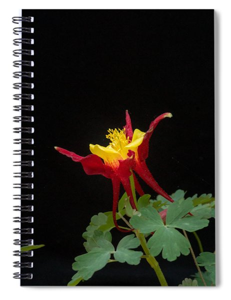 Red And Yellow Columbine Spiral Notebook