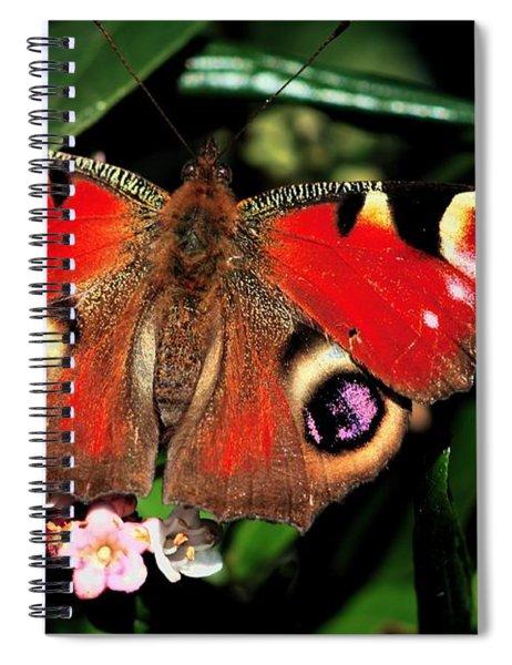 Red Butterfly In The Garden Spiral Notebook