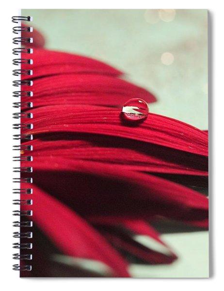Red Daisy Spiral Notebook