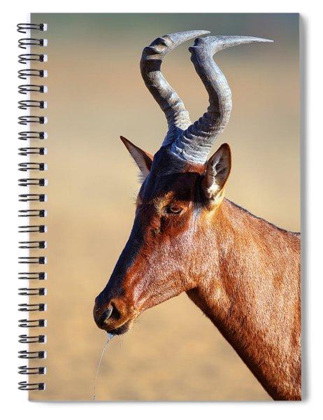 Red Hartebeest Portrait Spiral Notebook