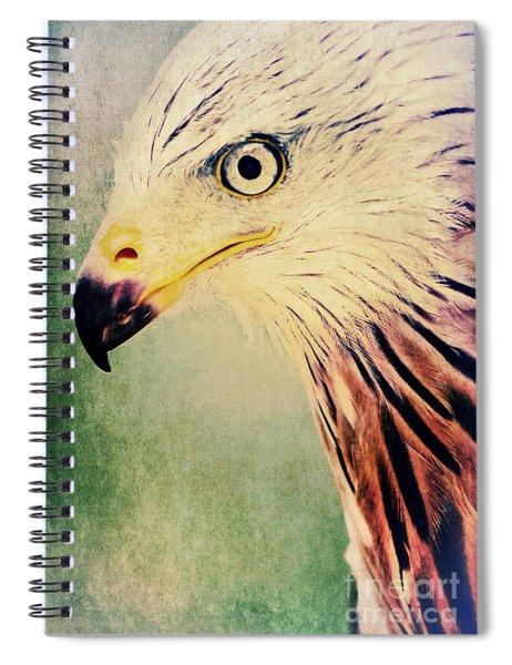 Red Kite Art Spiral Notebook