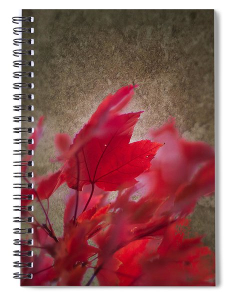 Red Maple Dreams Spiral Notebook
