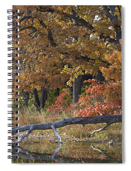 Red Oaks On The Shore Spiral Notebook