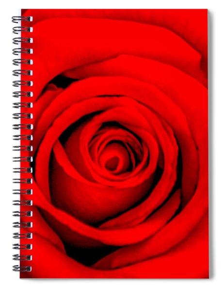 Red Rose 1 Spiral Notebook