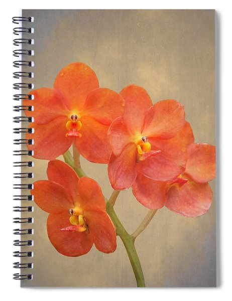 Red Scarlet Orchid On Grunge Spiral Notebook