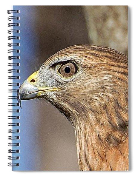 Red-shouldered Hawk Spiral Notebook
