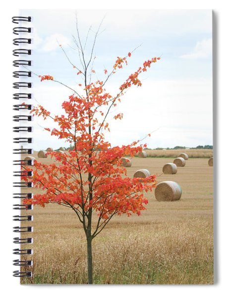 Red Tree Spiral Notebook