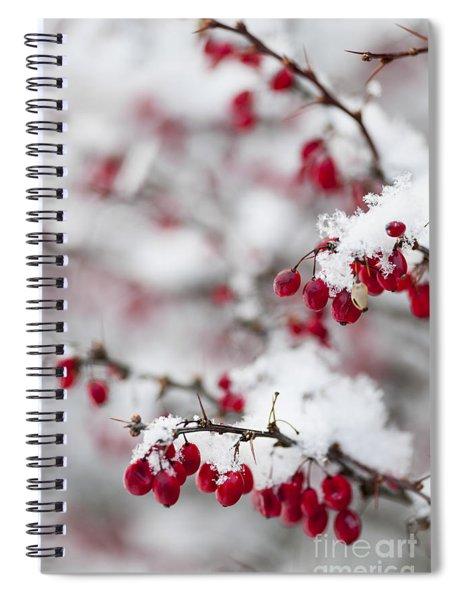 Red Winter Berries Under Snow Spiral Notebook
