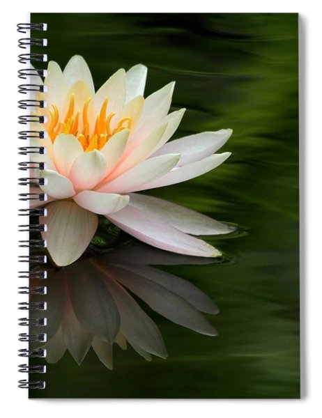 Reflections Of A Water Lily Spiral Notebook