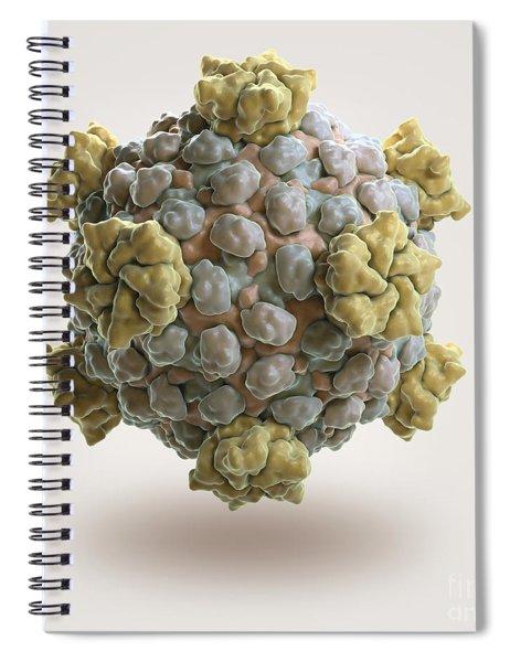 Reovirus Core Spiral Notebook