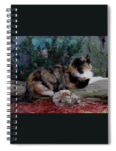 Resting Calico Cat Spiral Notebook