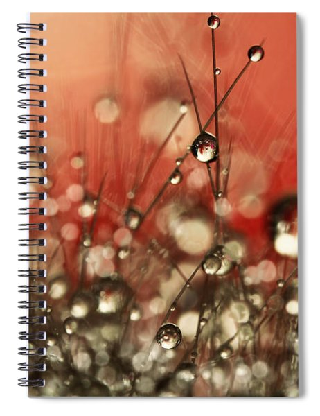 Riot Red Cactus Sparkles Spiral Notebook