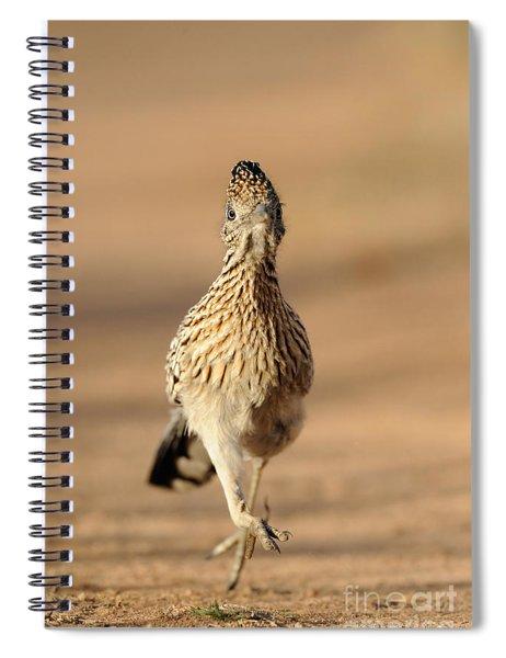 Roadrunner Running Spiral Notebook