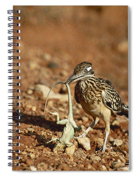 Roadrunner With Lizard Spiral Notebook