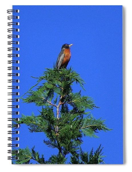 Robin Christmas Tree Topper Spiral Notebook