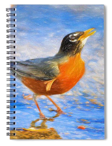 Robin In Florida Spiral Notebook