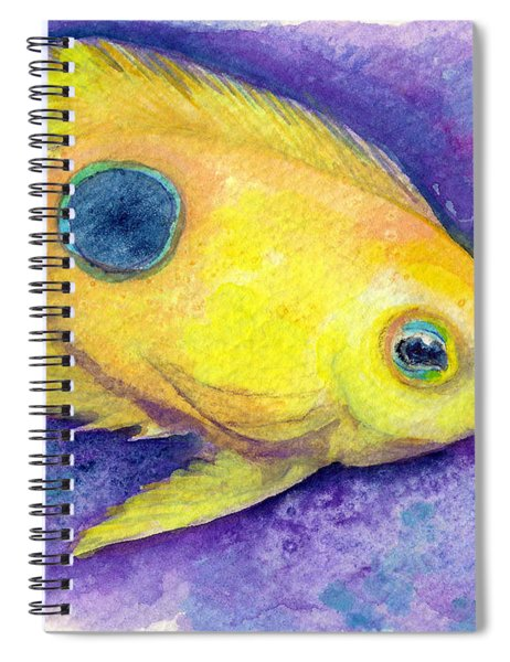 Rock Beauty Spiral Notebook