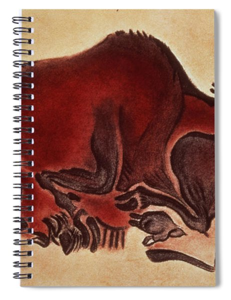 Rock Painting Of A Bison, Late Magdalenian, 13000 Bc Spiral Notebook