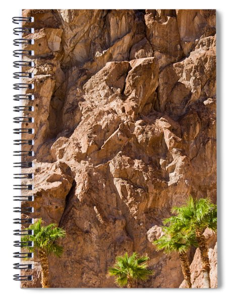 Rocky Oasis Spiral Notebook