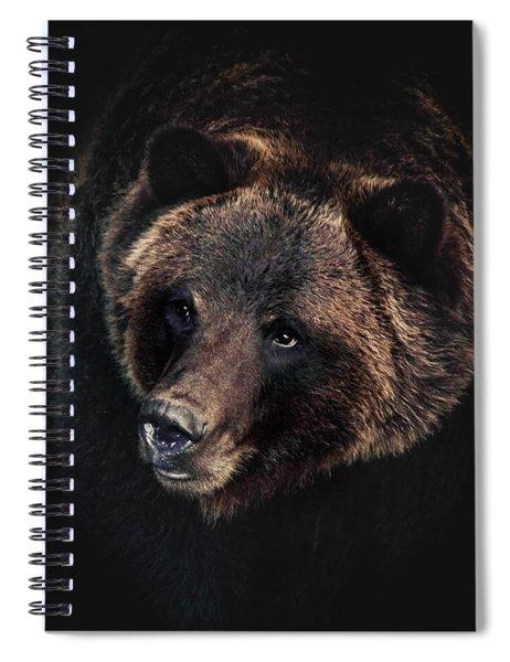 Ronan  Spiral Notebook