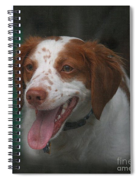 Rooney At The Back Door Spiral Notebook