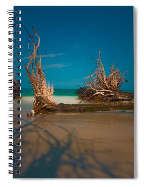 Roots 1 Spiral Notebook