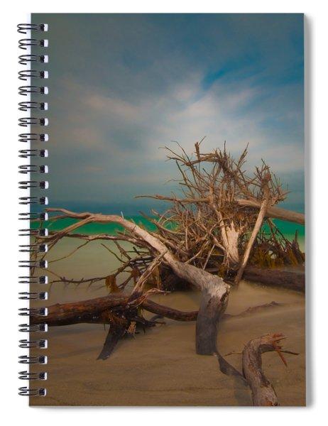 Roots 4 Spiral Notebook