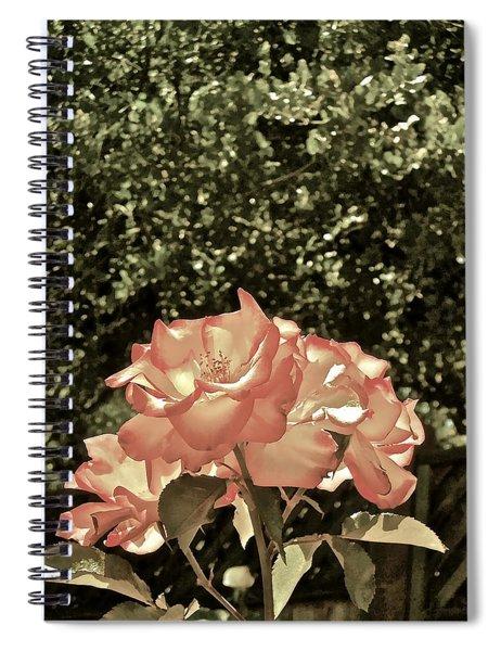 Rose 55 Spiral Notebook