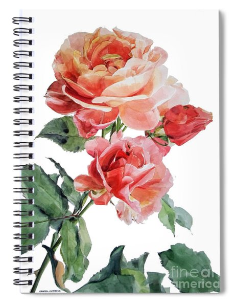 Watercolor Of Red Roses On A Stem I Call Rose Maurice Corens Spiral Notebook