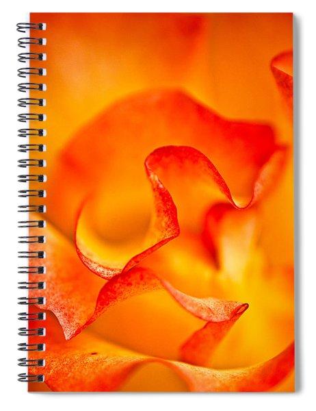 Rose Petals Closeup Spiral Notebook