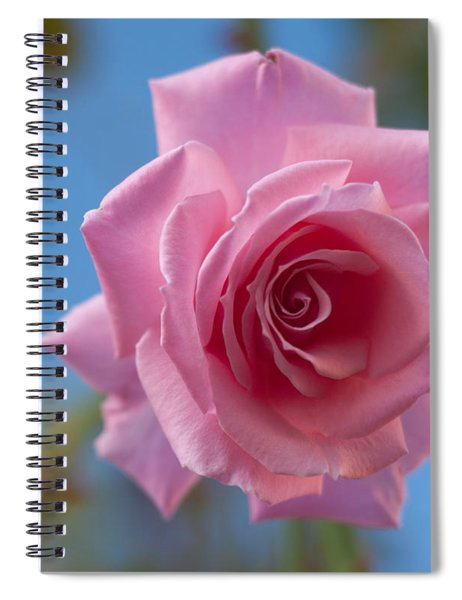Roses In The Sky Spiral Notebook